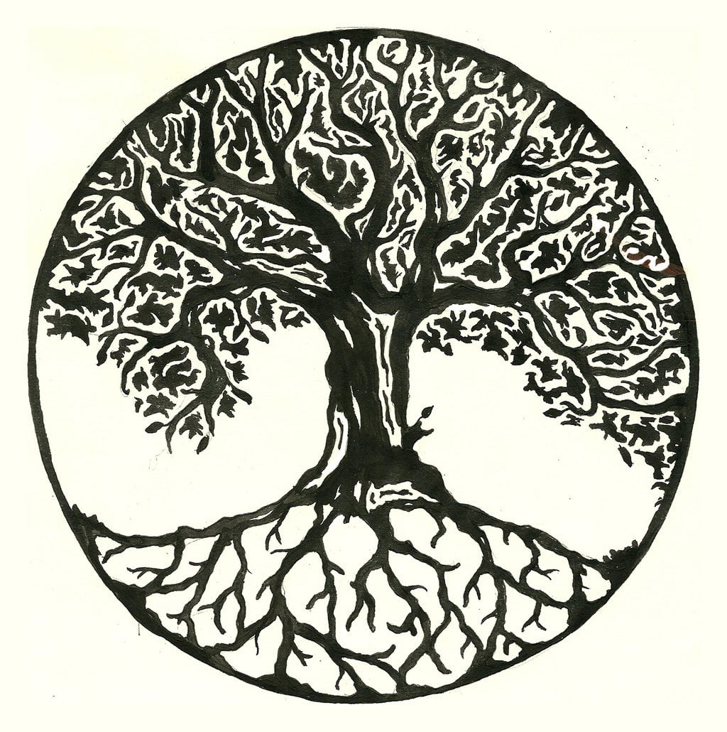 tree_tattoo_design_by_annie_lane-d6f1jo0