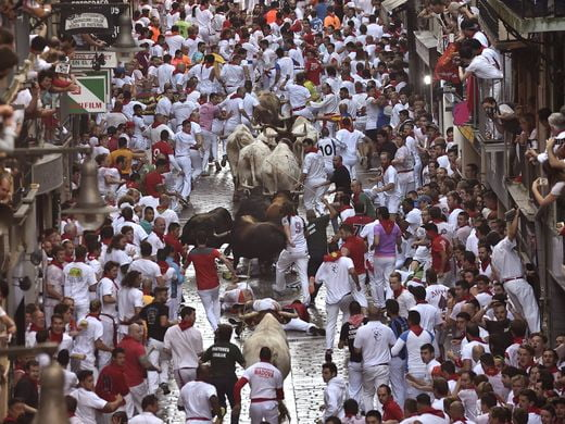 "The pratice of ""Running The Bulls, which has triggered animal rights protests this year."