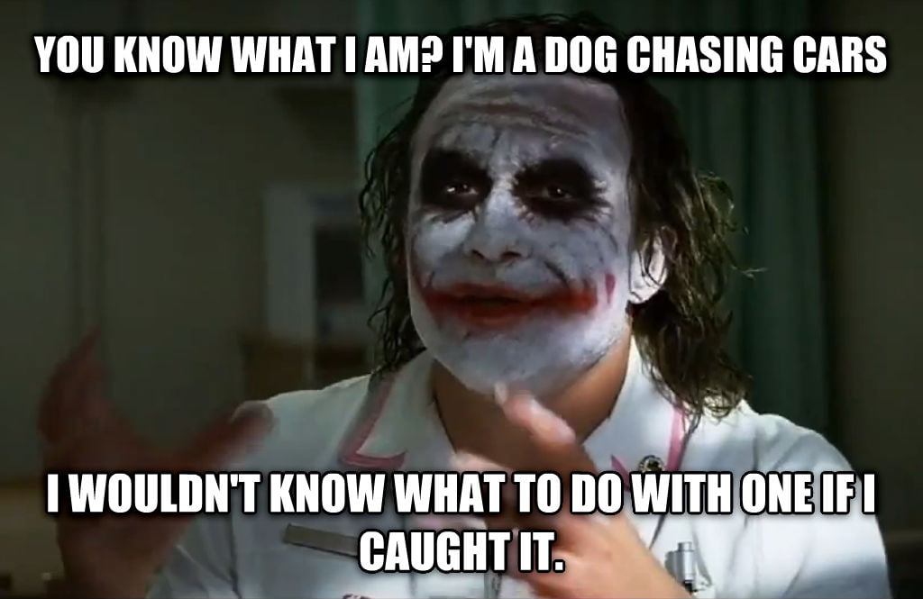 dog chasing cars