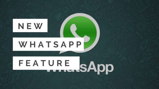 undo feature introduced by whatsapp