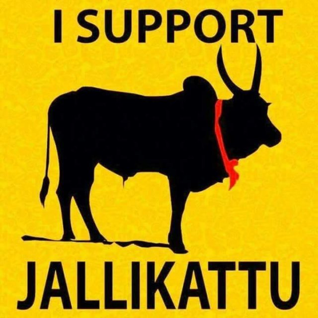 Jallikattu shouldn't be banned because?