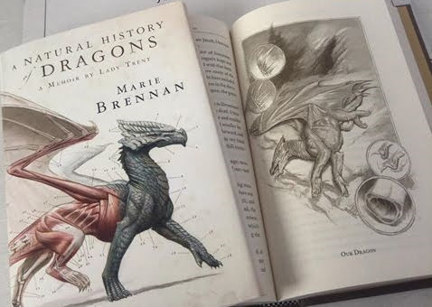 a natural history of dragons