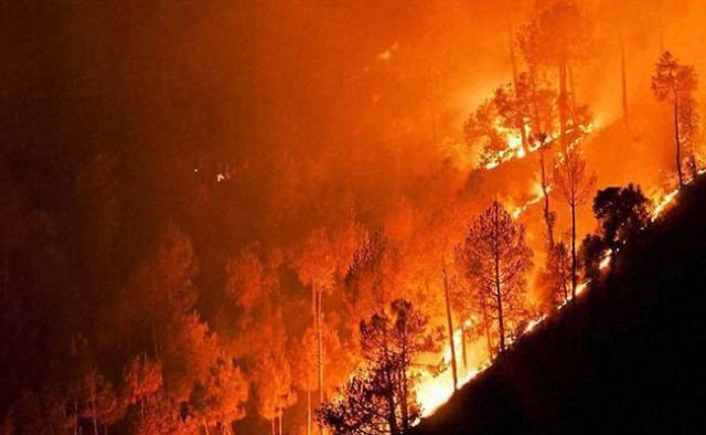 Pauri forest fires