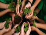 Rs. 50 To School Students For Planting Trees