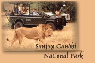 sanjaygandhipic