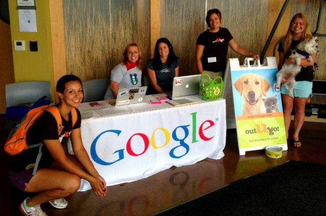 Image result for Google office- pet day