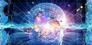 the big brain project