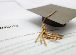 higher studies or job